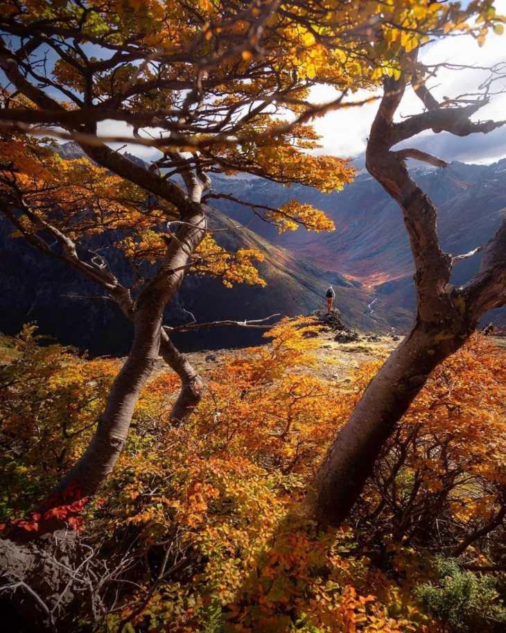 Viajar sozinha a Bariloche no outono