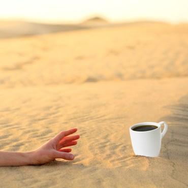 이열치열, 더위를 식히려면 뜨거운 커피를…