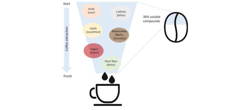 hợp chất khi chiết xuất cà phê