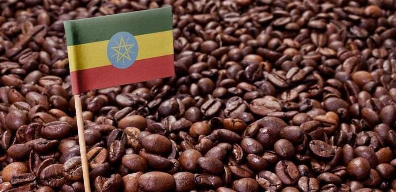 Coffee Ethiopia Arabica