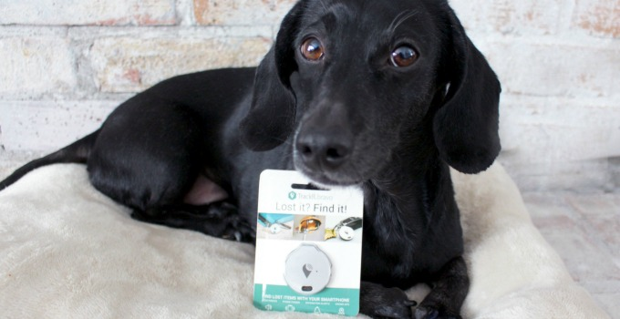 """Giveaway! Know Where Your Pet Is With The """"TrackR"""""""