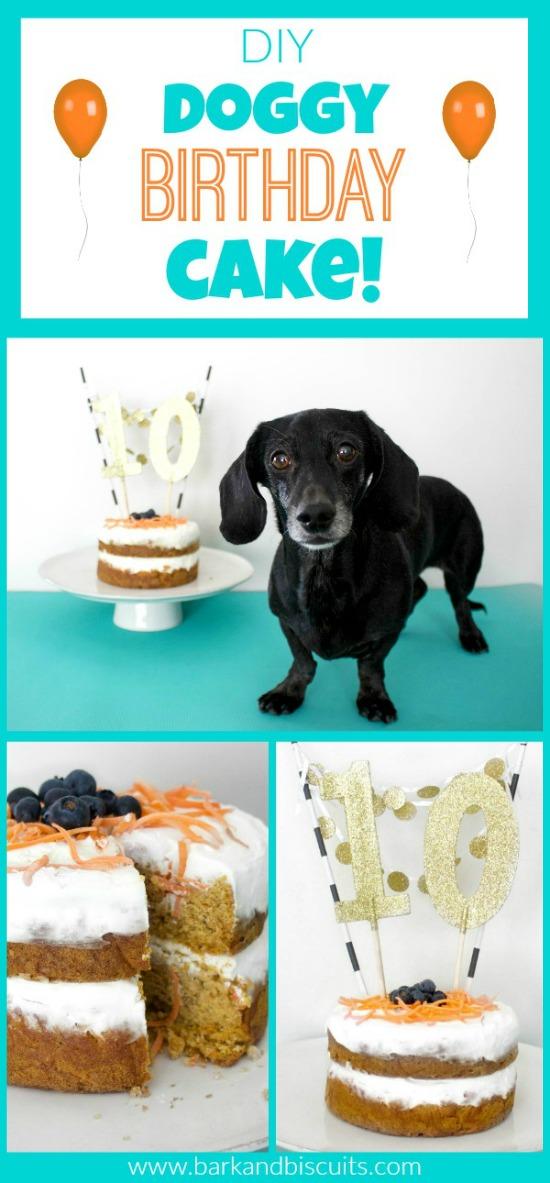 DIY Dog Birthday Cake! The Perfect Way To Celebrate Your Dog's Birthday!