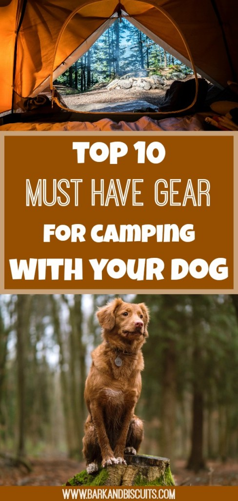 Camping With Dogs - Top 10 Must Have Gear #camping #campingwithdogs #campinggear
