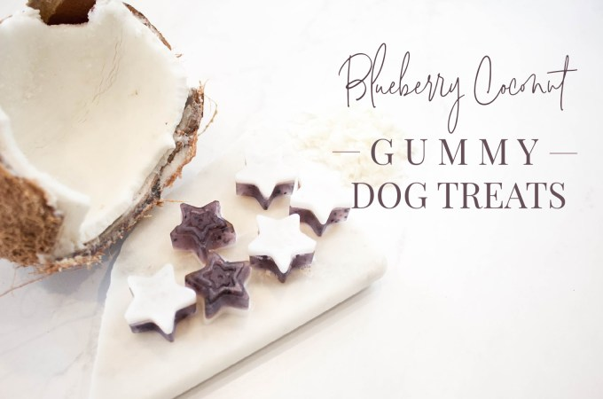 Blueberry Coconut Gummy Dog Treats