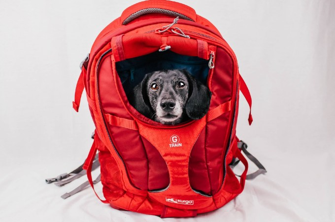 Kurgo G-Train Dog Carrier Backpack