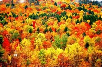 Fall Activities in the Catskills , Barker Hudson