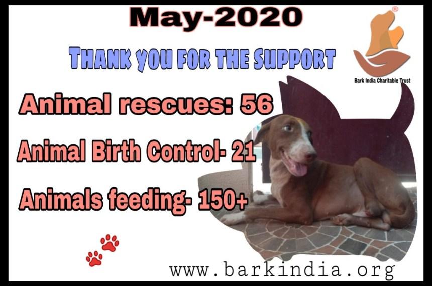 Animal Welfare activities- May 2020