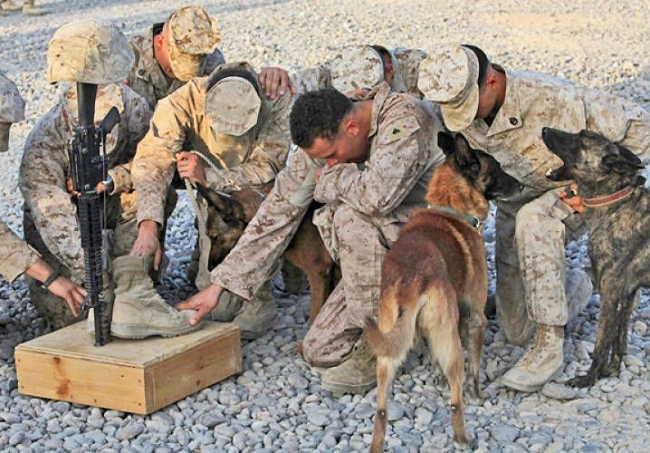 Military men grouped on bended knee honoring a fallen soldier with his dog.