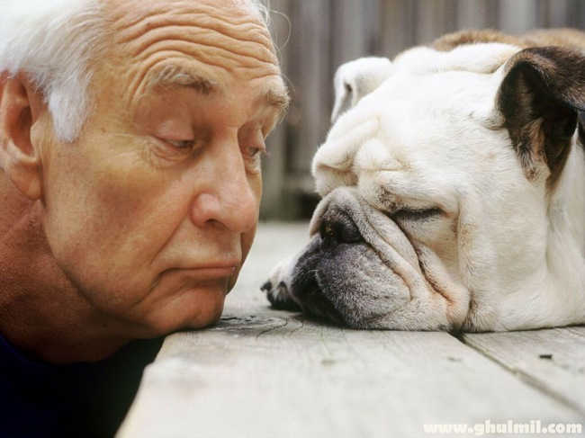 old-dog-with-a-old-man
