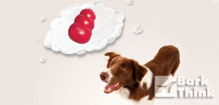 Over 50 Ways to Stuff a Kong Dog Toy! Helpful in aiding dogs with anxiety, crate training, fearful puppies, and providing mental stimulation.