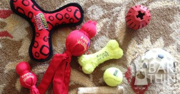 Best KONG Toys for Puppies & Aggressive Chewers. Great ways to help deter destructive chewing, soothe dog anxiety, crate train, calm hyperactive dogs, and provide mental exercise.