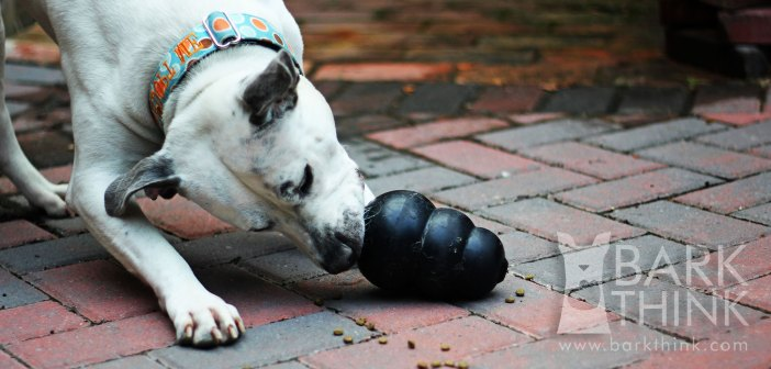 How to Clean & Sanitize Kong Dog Toys. The Best Way to Clean Dog Toys for Puppies.