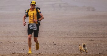 Stray Dog joins Marathoner on 155-mile race throughout Gobi Desert, China
