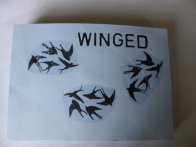 "Janine ""Winged"" A pop-up book"