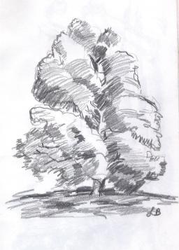 SketchBook_p01