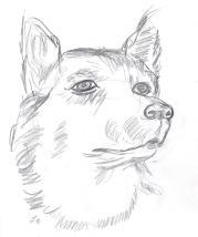 SketchBook_p11
