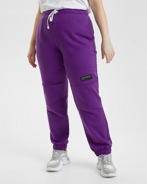 Брюки спортивные женские Plus size фиолетовые