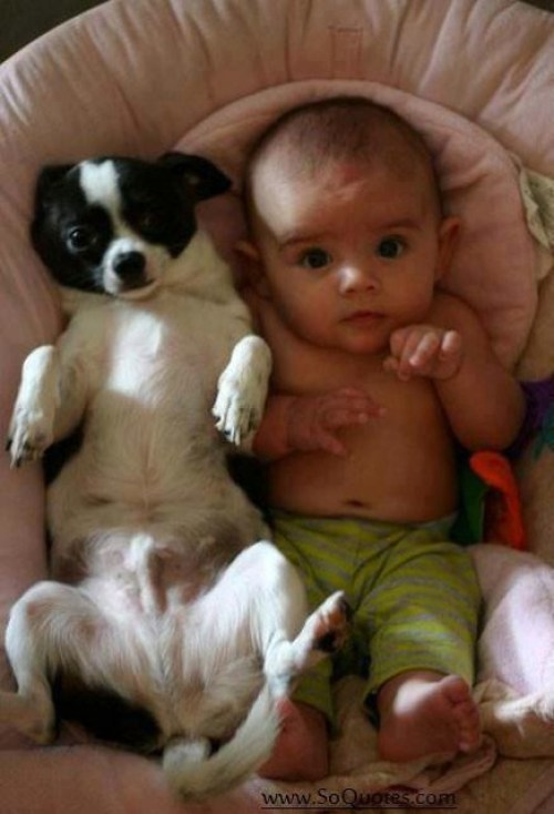 baby-with-pet-puppy