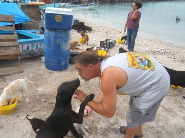 American couple holidaying in Mexico look after help 34 Homeless cats dogs.4