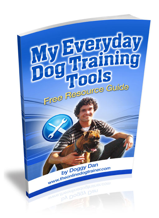 dog training tips for new owners