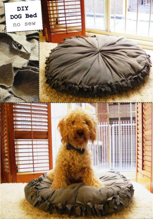 dog pillow DIY no sew