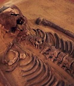 First Phoenician DNA is European