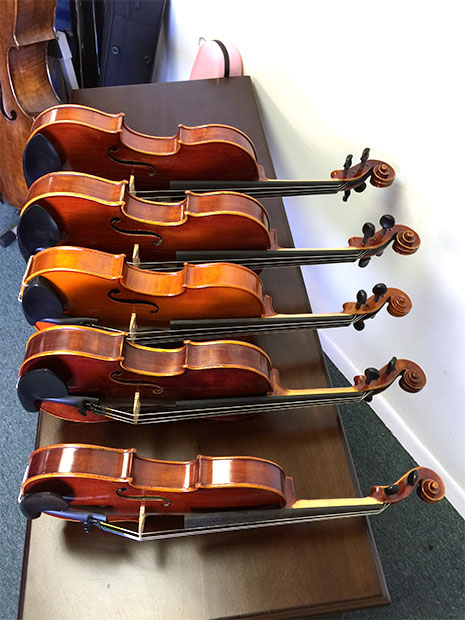 Violas Available for Rental