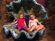 Found these mermaids at Monterey Bay aquarium.