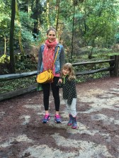 Wandering and wondering at the redwoods, Henry Cowell State Park
