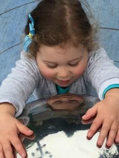 Mirror ball, SF Zoo.