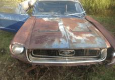 Craigslist Mustang