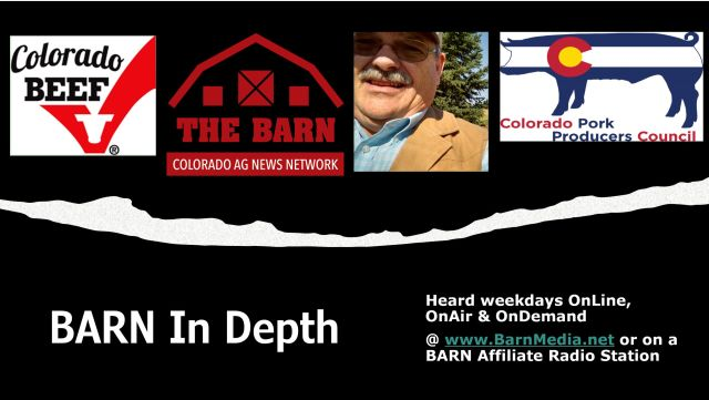 This image has an empty alt attribute; its file name is BARNs-BID-MASTER-BRIAN-ALLMER-CBC-CPPPC-111620-1024x578.jpg