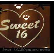 Sweet 16 DJ!