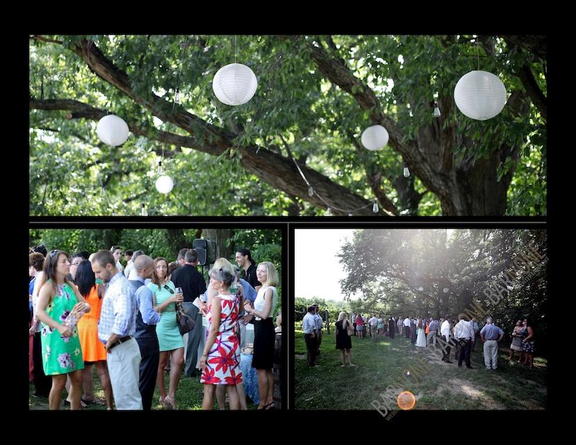 Monterre Vineyards wedding 1439