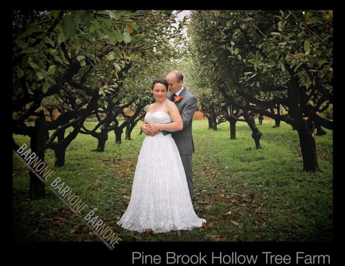 Pine Brook Hollow Wedding 276