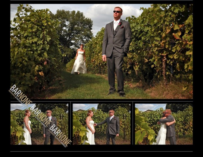 Bar None Photography - Monterre Vineyards Wedding 1300
