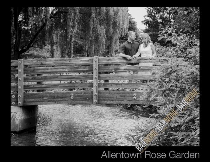 Allentown Rose Garden - Bar None Photography 1585