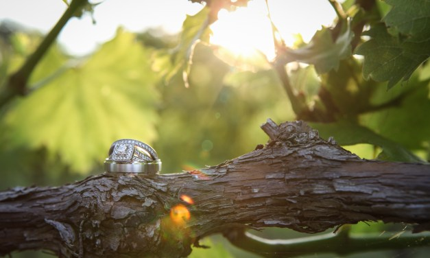 Mindy and Peter Wedding Photography at Monterre Vineyard