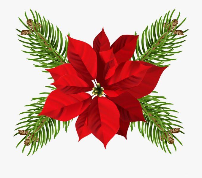 Festive Dates November to December 2019