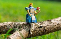 Alice & The Mushroom