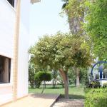 Five Bedroom Semi Furnished Villa 2