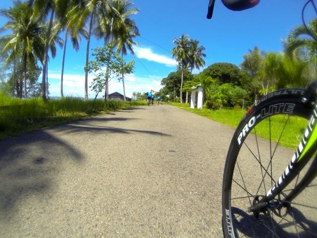 The coastal road