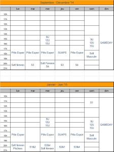 organisation_sportive_2015