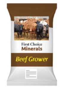 Bag of beef grower