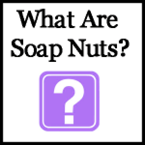 what-are-soap-nuts-150x150