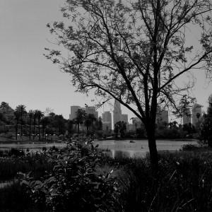 Echo Park Lake Westside