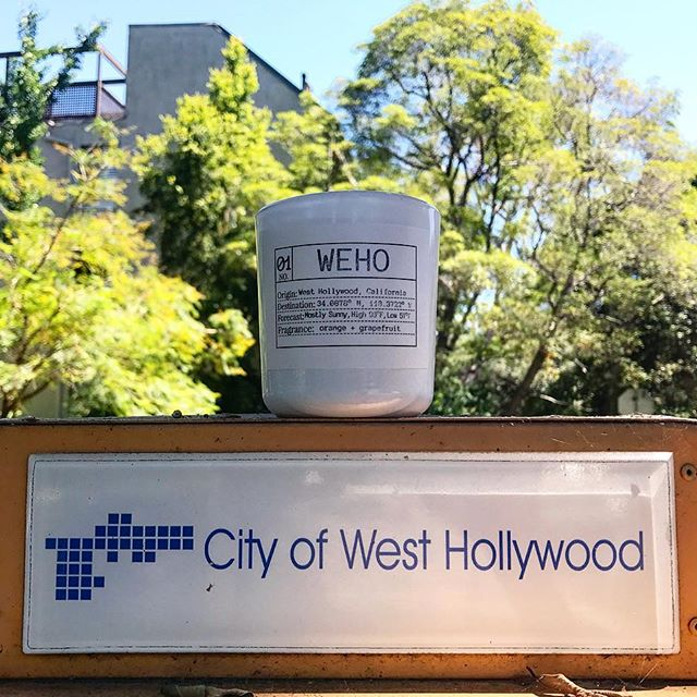 West Hollywood soy candle by Flores Lane