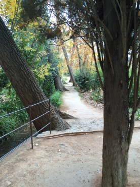 Walkway through Generalife