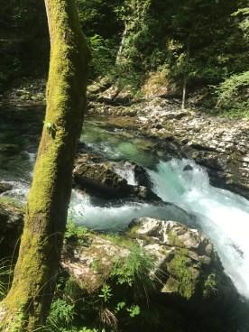 Gorge near Bled