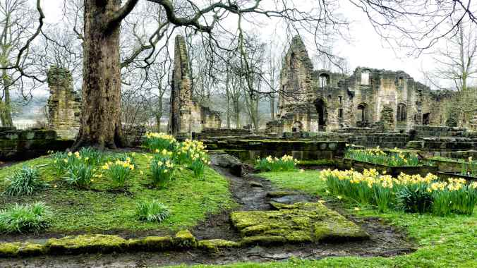 Kirkstall Abbey Barry Teutenberg